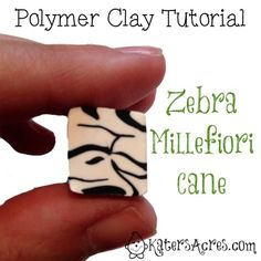 Zebra Cane Tutorial    A Trip To the Zoo with a Zebra Cane Tutorial Today's zebra cane tutorial is a different kind of tutorial for me to offer you. Instead of explicit written directions, I am offering just the photo instructions. If you like this kind of tutorial, please COMMENT below &a