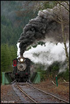 Number 10 crossing the Nisqually River