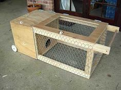 Nice design. Rabbits, guinea pigs, chickens.