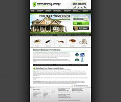 An Informative and Modern Web Design by VisionFriendly.com Illinois, Modern Web Design, Protecting Your Home, Pest Control, Commercial