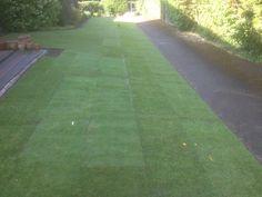 Lawn Turfing, Tadmarton, Oxfordshire Lawn Care, Sidewalk, Green, Lawn Maintenance, Side Walkway, Walkway, Walkways, Pavement