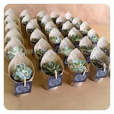 Souvenirs para regalar de suculentas