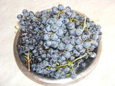 Struguri negri de bolta Nutella, Blueberry, Fruit, Gardening, Food, Plant, Life, Berry, Blueberries