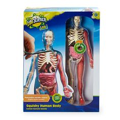 Squishy Toys At Toys R Us : 1000+ images about Ezra s Christmas Gift on Pinterest Human body, Toys r us and Insects
