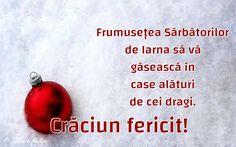 Frumusețea Sărbătorilor de Iarna să vă găsească în case alături de cei dragi. Case, Holidays, Christmas, Food, Xmas, Holidays Events, Holiday, Essen, Navidad