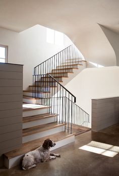 The vaulting and light in stairwell is gorgeous...don't care for railing or treat choices  Richard Lane by Ryan Street & Associates