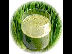 Almond Milk 1/2 Cup  Water 1/2 Cup  Wheat Grass Powder 1 Scoop  Spirulina 1 1/2 Teaspoon  Chia Seed 1 Teaspon