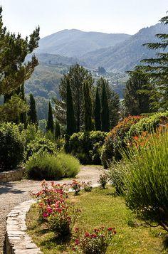 Gaiole in Chianti, Tuscany, Italy September, 2000