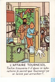 Tintin and Captain Haddock enter Professor Calculus' scientific laboratory Tin Tin Cartoon, Captain Haddock, Caricatures, Herge Tintin, Comic Art, Comic Books, Lucky Luke, Ligne Claire, Falling In Love With Him