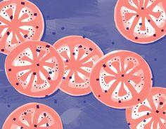 SARAH FERONE Illustration + Design Remedy Quarterly