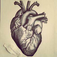 Resultado de imagen para dibujo de corazon a lapiz de humano Illustration Art Nouveau, Medical Illustration, Illustration Artists, Norman Rockwell, Sketch Faces, Cartoon Star Wars, Human Heart Drawing, Human Heart Tattoo, Nursing Wallpaper
