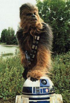 Chewbacca & back together again for Star Wars Episode VII! Star Wars Film, Star Wars Art, Star Trek, Harrison Ford, Star Wars Characters, Star Wars Episodes, Starwars, Humour Geek, Peter Mayhew