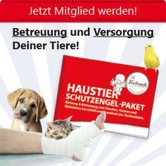 Haustier-Schutzengel-Paket für Haustiere und Haustierbesitzer Animals, Guardian Angels, Pets, Animales, Animaux, Animal, Animais
