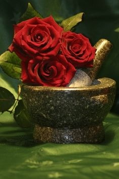 How do I Preserve Roses With Glycerin?