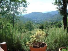 Uitzicht vanaf mijn vaders terras, zomer....
