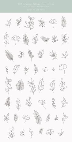 This bundle includes 50 unique botanical floral illustrations which you can use for logos, invitations, stationery, patterns and much more. This design kit is drawn in Illustrator, vector based and high quality. Bullet Journal Art, Bullet Journal Ideas Pages, Bullet Journal Inspiration, Illustration Blume, Botanical Illustration, Botanical Drawings, Illustration Sketches, Watercolor Illustration, Flower Tattoos