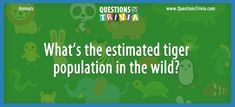 Animal Trivia, Kids Trivia Questions – What's the estimated tiger population in the wild? Trivia Questions For Kids, Quizzes For Kids, Tigers Live, Wildlife Conservation Society, Bronx Zoo, Web Design Trends, Wordpress Template, Mammals