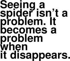 Seeing a Spider