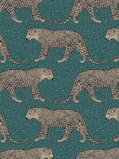 This stunning Leopard Wallpaper would make a unique and stylish feature in your home. The design features a repeat pattern of beautifully detailed leopards in metallic gold, set on a leopard print patterned background in tones of emerald green. Easy to apply, this high quality wallpaper has a beautiful metallic sheen finish and will look great when used to decorate a whole room or to create a feature wall. This colourway is exclusive to World of Wallpaper and can not be found on the high street. Leopard Wallpaper, Animal Print Wallpaper, Emerald Green, Green And Gold, Wild Creatures, Paper Wallpaper, High Quality Wallpapers, Leopards, Safari Animals