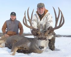 Alberta is one of North America's premier hunting regions, and arguably the best place in the world to hunt trophy mule deer. Mule Deer Hunting, Big Game Hunting, Outdoor Activities, North America, Fun Stuff, Lion Sculpture, Canada, Statue, Guys