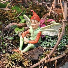 Miniature Dollhouse FAIRY GARDEN ~ The Good Elf Flower Fairy Retired Sold Out Cicely Mary Barker
