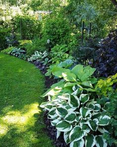 shade garden Astonishing Play Garden Design Ideas For Your Kids 37 Garden Yard Ideas, Backyard Garden Design, Backyard Ideas, Amazing Gardens, Beautiful Gardens, Design Jardin, Flower Garden Design, Flower Bed Designs, Beautiful Flowers Garden