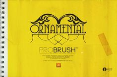 Brush | Ornamental ProBrush™ by Leonard Posavec on Creative Market