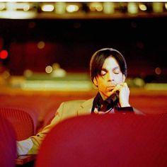 Prince photo by Afshin Shahidi