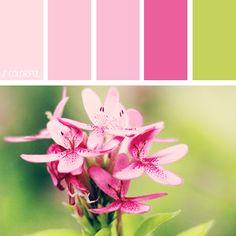 // COLORFUL. 0001 - PHOTOCREDIT: UNSPLASH @jardo #kleur #kleurpaletten #kleurpallet #color #colorpalette #colorpalletes #colour #colourpalette #colourpalettes