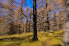 Speed of light by AlessandraGandolfi. @go4fotos
