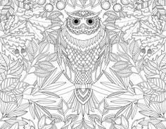 green design, eco design, sustainable design, Johanna Basford, coloring books for adults