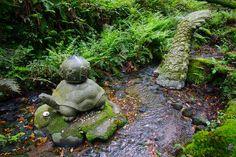 霧島歩き(1) - 鹿児島の自然と食