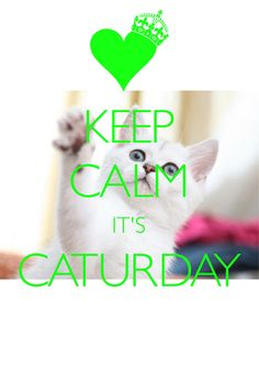 keep calm it\'s caturday / Created with Keep Calm and Carry On for iOS #keepcalm #caturday
