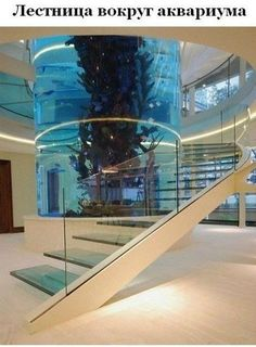 Лестница с аквариумом