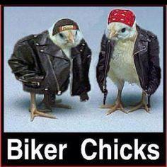 Biker Chics in the spirit of Easter :)