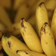 Ways to Use Old Bananas
