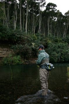 Fishing Guide, Fly Fishing, Brown Trout, New Zealand, Trout, Fly Tying, Camping Tips