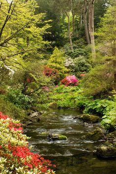 the stream running through Bodnant Garden by kilmarnockwillow on Flickr.