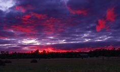 Autumn Chill (clouds sunrise+sunset Fall+colors sky trees ). Photo by…