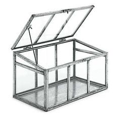 Zimmergewächshaus Glas und Stahl  | Zimmergärtnerei
