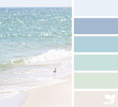 Shore Tones - https://www.design-seeds.com/wander/sea/shore-tones-5
