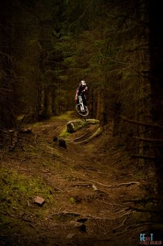 The Forest is my Playground, bikeengines-com: For more great pics, follow...