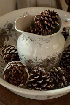 19th century ironstone with pinecones  photo Heather Ross - do this with my Yellowstone Pitcher!