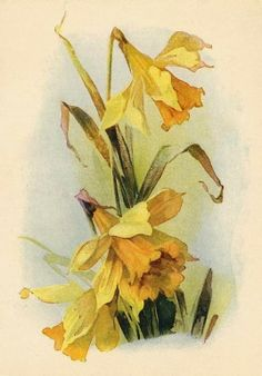 bumble button: Daffodils and Vintage Calendar to Welcome March