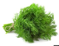 Fresh Dill~ Packed with calcium, can be added to any bland salad or dip. Great with a Pumpernickle & Dill Dip recipe.