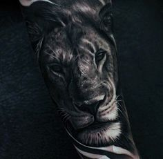 Manly Lion Forearm Tattoos For Men