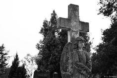 #enkeli #risti #hautausmaa #suru #valokuva #valokuvaus #mustavalkoinen
