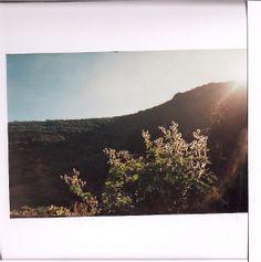 snake skin . jacket   .   panorama mountain view france. analogue photography, sun flares