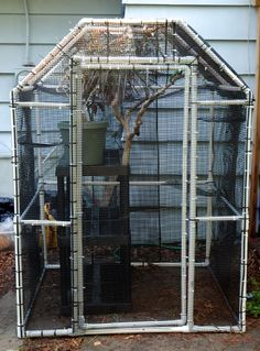 I had a lot of people ask me for plans for my pvc cage I built. These were put together after I built mine so it's a bit rough, but. Chameleon Enclosure, Cat Enclosure, Reptile Enclosure, Reptiles, Lizards, Amphibians, Cat Cages, Bird Cages, Reptile Cage