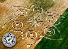 Crop Circle --Italy